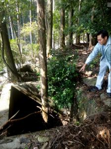 集落奥の山中。水の枯れた貯水槽から杉の木が生えていた=愛知県新城市徳定